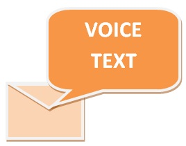 Call management voice text service